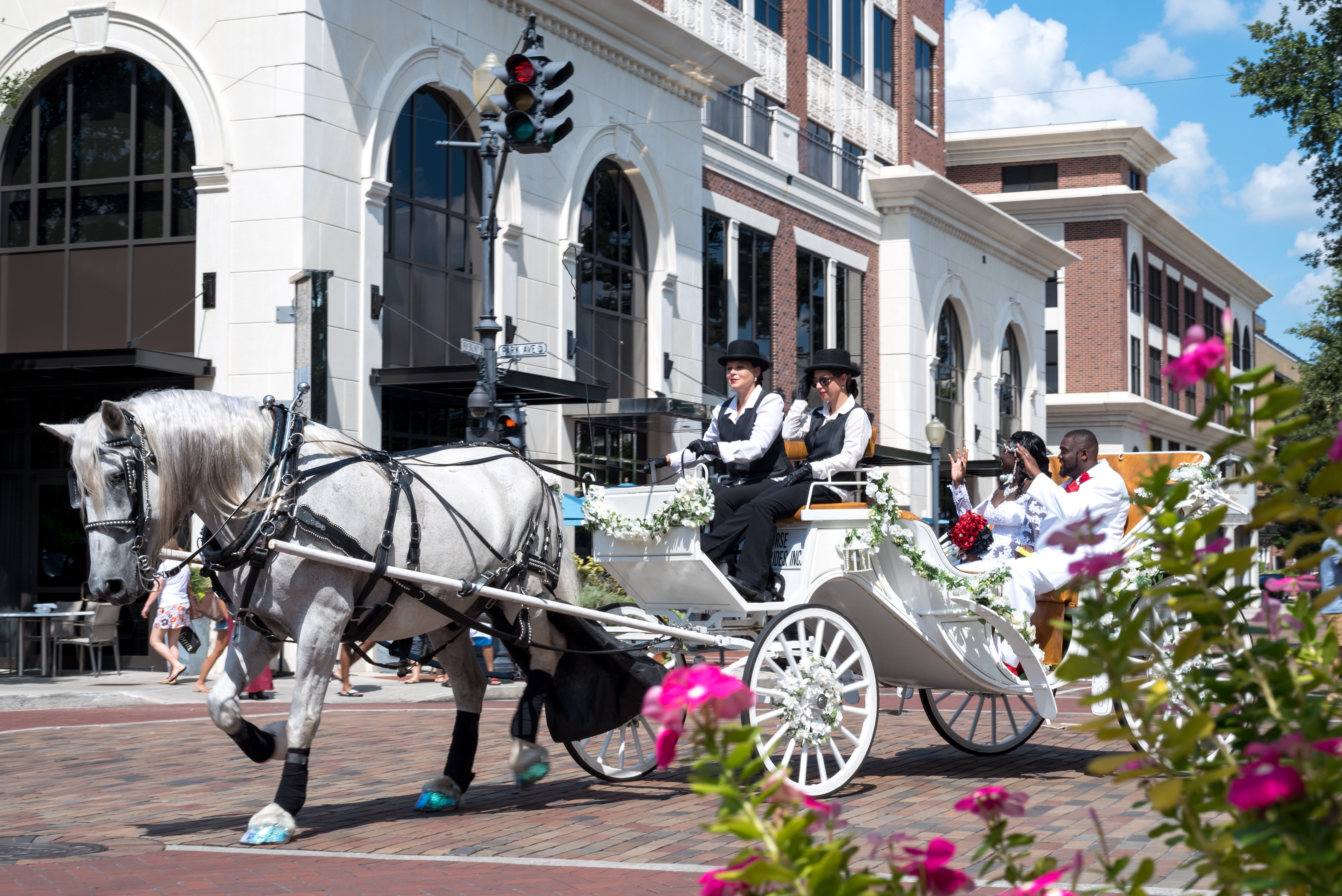 Winter Park Weddings, horse and carriage, downtown winter park weddings, downtown horse and carriage. Park Ave Winter Park