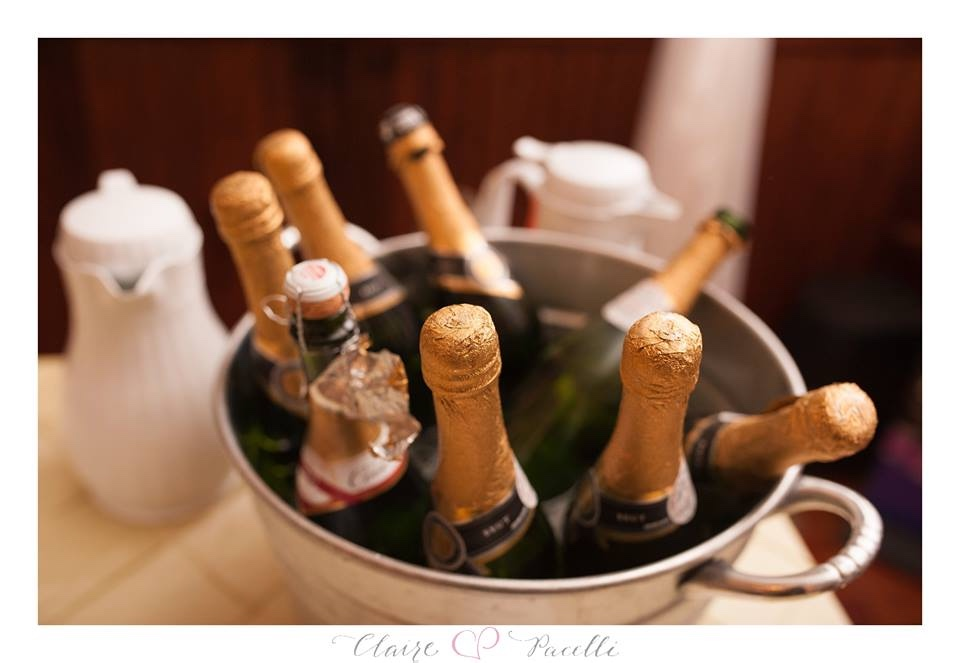champagne wedding toast beautiful bride Orlando